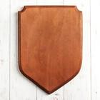 """Медальон для трофеев """"Щит"""",20 х 29 см, массив бука"""