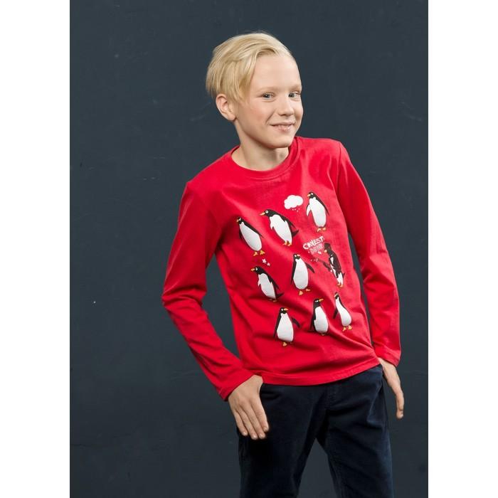 Джемпер для мальчика, рост 140 см, цвет малиновый
