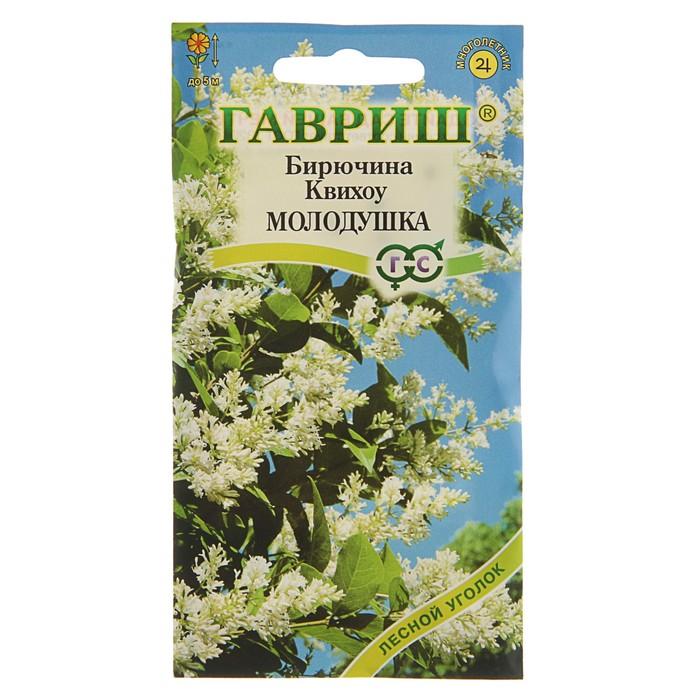 Семена Бирючина Квихоу, Мн, 0,3 г