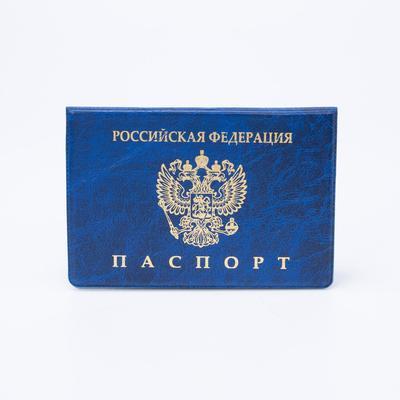 Passport cover horizontal, emblem, embossed, color blue