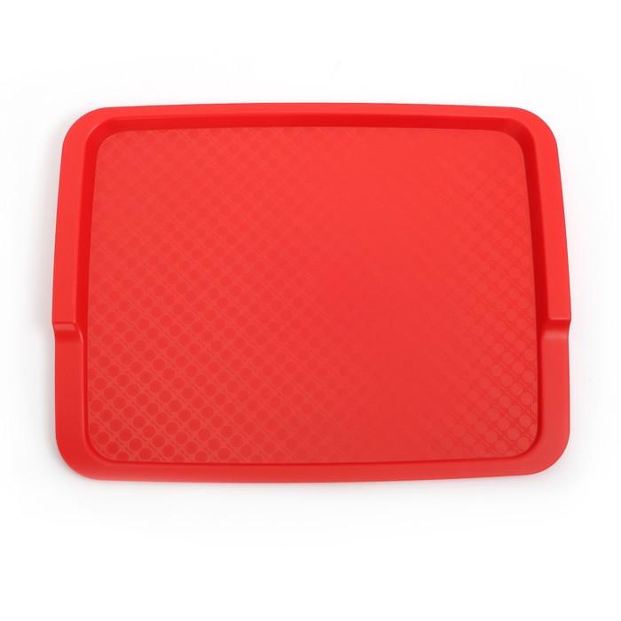 Поднос, 42,5×32 см, цвет красный
