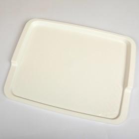 Поднос, 42,5×32 см, цвет белый