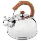 Чайник со свистком Wellberg, 3,5 л