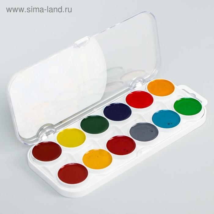 Акварель 24 цвета «Смешарики (Крош)»