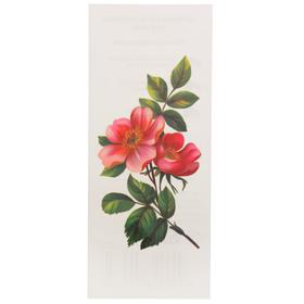 "Татуировка на тело ""Цветок яблони"" 5,5х12 см"