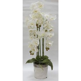 Декор.цветы Орхидеи белые в керам.вазе