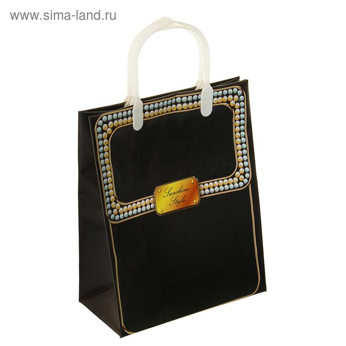"""Пакет """"Черная жемчужина"""", мягий пластик, 26 х 23 см, 120 мкм"""