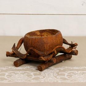 Цветочница, одноместная, 14х14 см, лянь, кокосовая скорлупа