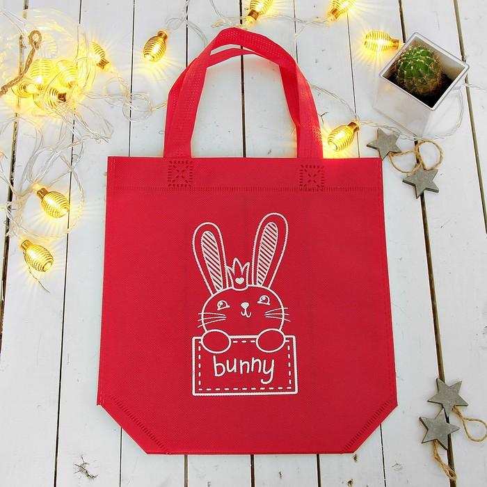 """Сумочка детская """"Bunny"""", для обуви 25 х 26 см"""