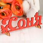 """Деревянная заготовка """"Соня"""""""