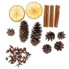 Набор ассорти (корица, бадьян, апельсин, шишки)