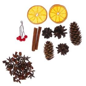 Набор ассорти (корица,бадьян, апельсин,шишки, ягоды декоративные) Ош