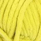 Жёлто-зелёный