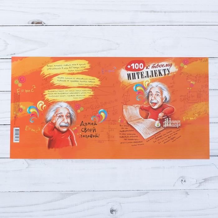 Обложка для книг «+100 к интеллекту», 43 х 24 см