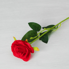 """Цветы искусственные """"Роза Морокко"""" 7*55 см, красная"""