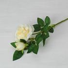 """Цветы искусственные """"Роза Моника"""" 9*50 см, белая"""