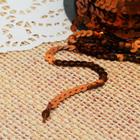 Лента декоративная пайетки, ширина 6мм, 91±1м, №27, цвет кофейный