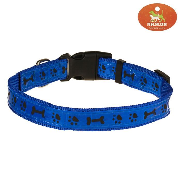 Ошейник двуслойный со светоотражающим покрытием и косточками, 55 х 2,5 см, синий