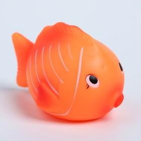 Игрушка для ванны «Чудо-рыбки», МИКС