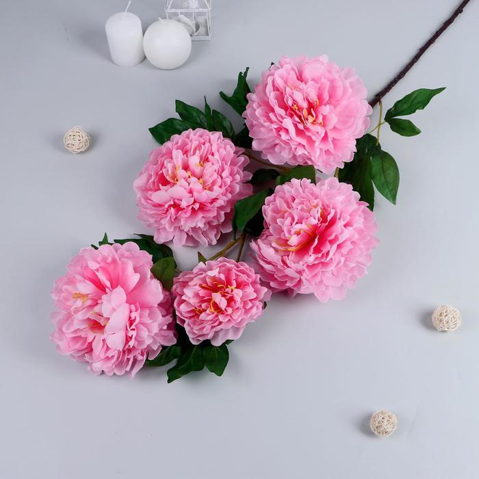 """Цветы искусственные """"Пион кустовой"""" 5 бутонов 15*110 см, розовый"""
