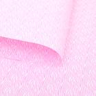 Пленка двухсторонняя с печатью 70 х 100 см