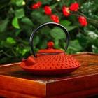 """Чайник с ситом 600 мл """"Марокко"""", цвет красный"""