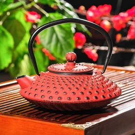 "Kettle with sieve and 600 ml ""Morocco"", color red"