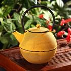 """Чайник с ситом 1 л """"Аман"""" с эмалированным покрытием, цвет желтый"""