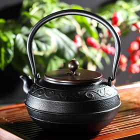 {{photo.Alt || photo.Description || 'Чайник «Дари», 1,4 л, с эмалированным покрытием, цвет чёрный'}}