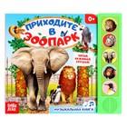 Книжка с музыкальным чипом «Приходите в зоопарк», 22 × 17 см, 10 стр.