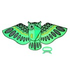 Воздушный змей «Сова», с леской - фото 994602