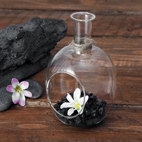 """Флорариум """"Бутылка"""" 9*16 см, - фото 1704986"""