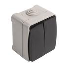 """Выключатель Smartbuy """"Сатурн"""", 10 А , 2 клавиши, IP54, чёрный/серый"""