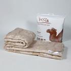 Одеяло 220х205 см, шерсть верблюда, ткань глосс-сатин, п/э 100% - фото 612075