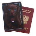 """Обложка для паспорта """"Щеночек"""""""