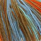 13315 Разноцветный