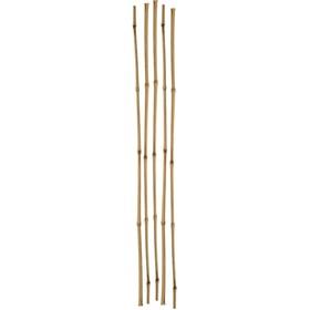 Колышек для подвязки растений, h = 180 см, d = 1 см, набор 5 шт., бамбук