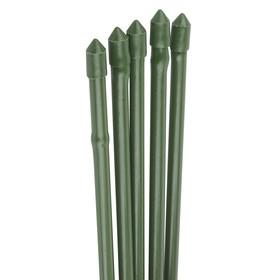 Колышек для подвязки растений, h = 180 см, d = 0.8 см, набор 5 шт., металл в пластике, «Бамбук»