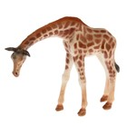 Фигурка животного «Жираф», МИКС - фото 105500472
