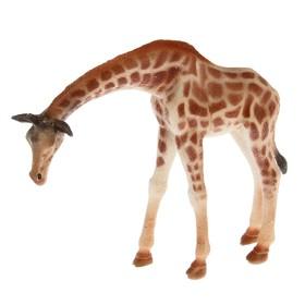 Фигурка животного «Жираф», МИКС
