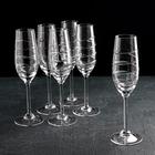 Набор бокалов для шампанского, 160 мл, 6 шт - фото 612989