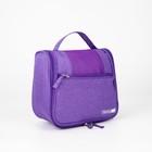 Косметичка-сумочка, отдел с карманами на молнии, наружный карман, цвет фиолетовый