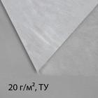 Материал укрывной, 5 × 1,6 м, плотность 20, с УФ-стабилизатором, белый, Greengo, Эконом 20%