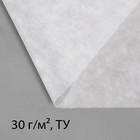 Материал укрывной, 5 × 1,6 м, плотность 30, с УФ-стабилизатором, белый, Greengo, Эконом