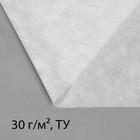 Материал укрывной, 10 × 1,6 м, плотность 30, с УФ-стабилизатором, белый, «Эконом»