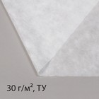 """Материал укрывной, 10 х 1.6 м, плотность 30, УФ, """"Эконом"""""""