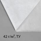 """Материал укрывной, 10 х 1.6 м, плотность 42, УФ, белый, """"Эконом"""""""
