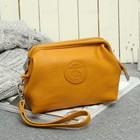Косметичка-сумочка TF102-070A, 16*7*10, отд на молнии, с ручкой, флотер желтый