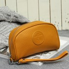 Косметичка-сумочка TF102-072, 17*5*11, отд на молнии, с ручкой, флотер желтый