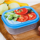 "The lunch box ""Tomatoes,"" 150 ml"